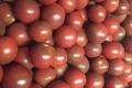 paarsecherrytomaatportet