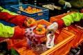 overhandigen-voedselbank-kleurrijk